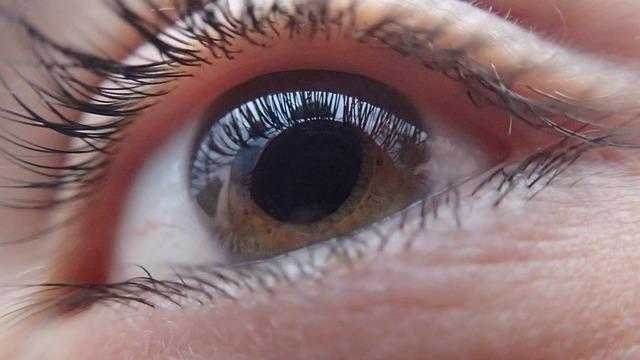 Oeil vu de près